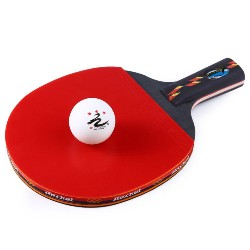 REGAIL D003 Table Tennis Ping Pong Racket One Short Handle Paddle Bat with Ball