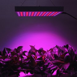 14W LED Grow Light Blue + Red Daylight Spotlight Spectrum for Indoor Plants / Seedling - EU Plug